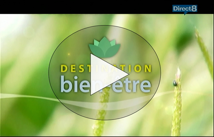 Videodirect8Moulindesjeannons